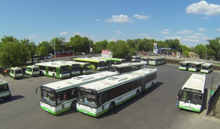 рынок автобусов