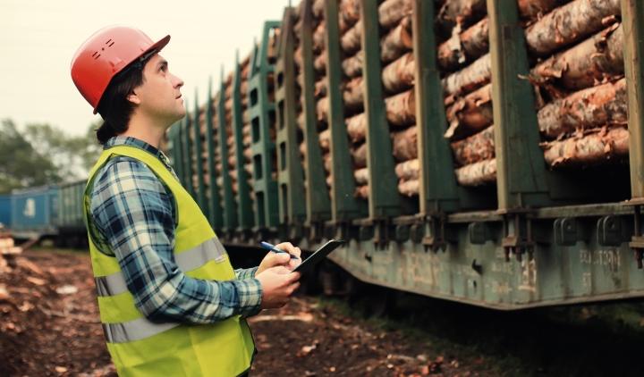 рынок древесины