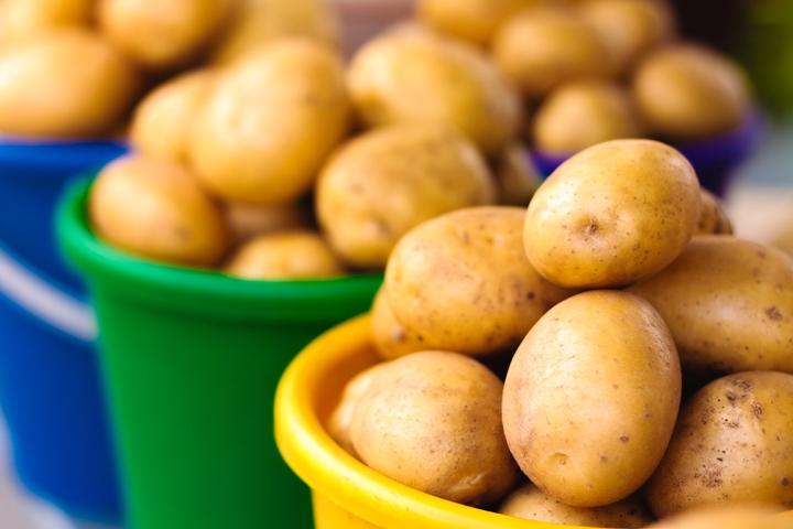 рынок картофеля